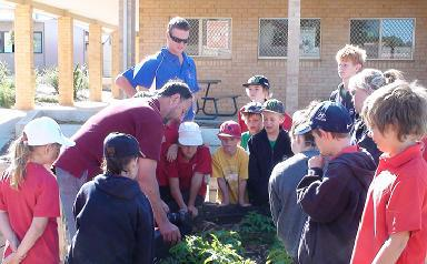 Image is from the Beyond Gardens website, of a visit to the Kalbarri Primary School's garden.