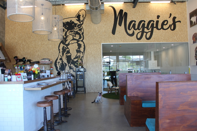 maggies dog cafe shop and salon, dog cafe, moonee beach, coffs harbour, dog friendly, cafe, dog salon, grooming, new south wales, sydney, brisbane, road trip, food, coffee, pet shop, pet supplies store, puppiccino, dog treats, off leash dog area