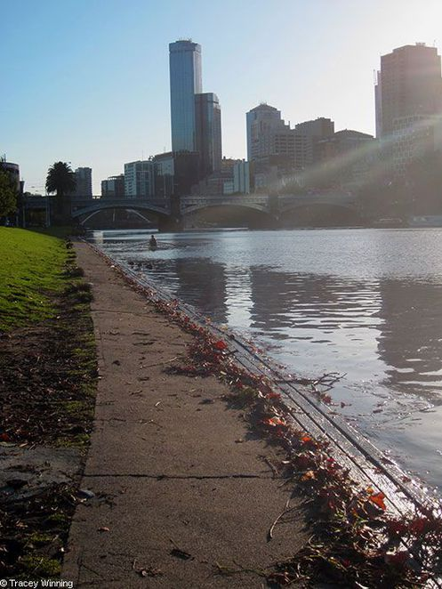 Melbourne walking Trails, Biking trails in Melbourne, Yarra River Trail, Top things to do in Melbourne, yarra River Trail