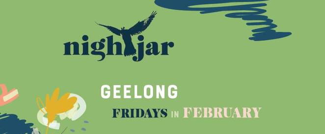 night jar festival torquay 2020, night jar festival geelong 2020, community event, fun things to do, activities, entertainment, market stalls, food trucks, live performances, bands, musicians, roving performers, buskers, free festival, picnic, family fun, date night, night out, family fun