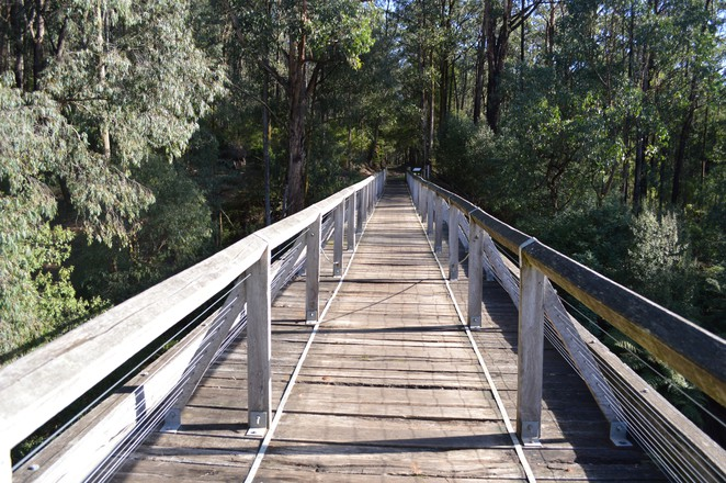 nojee trestle bridge, noojee, no. 7, nojee trestle bridge rail trail, heritage bridge, black friday,
