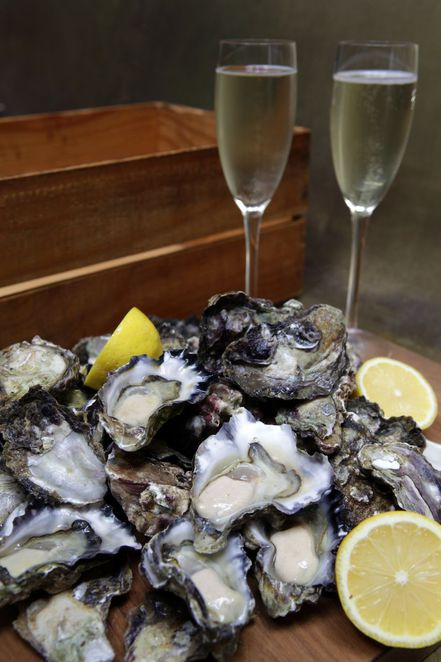 oysters, oyster platter, champagne, the morrison festival