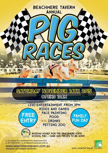 Pig Races, Beachmere