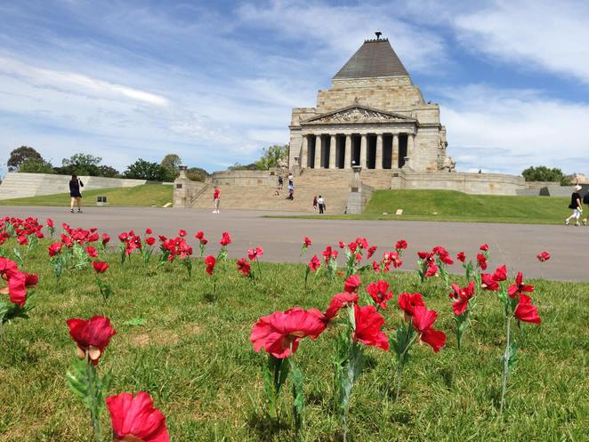 Shrine of Remembrance Dogs, Dolphins and Donkeys Animals in Wartime