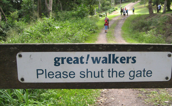 The road into the walk from Obi Obi Road is well sign posted