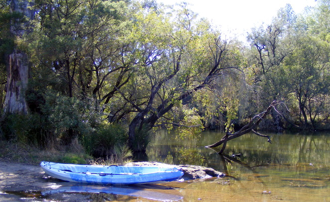 Tooloom Creek is a great place for kayaking or canoeing