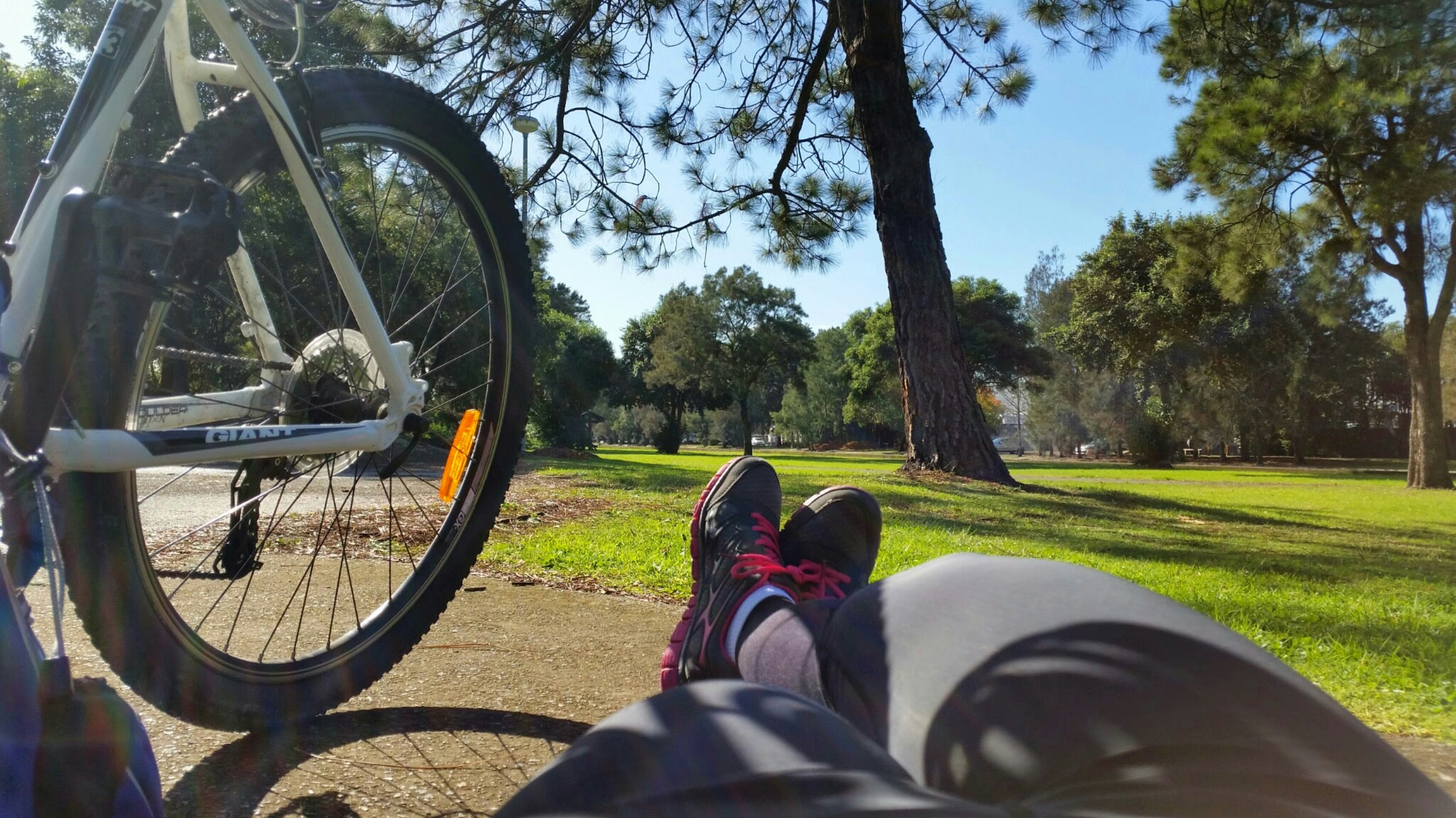 5 Easy Cycling Routes In Sydney Free