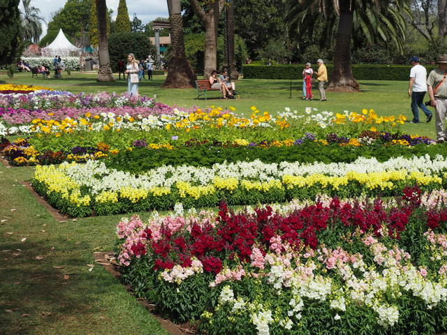 Carnival of Flowers, Toowoomba