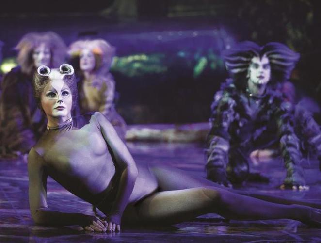 cats, musical, performing arts, qpac, lyric theatre, brisbane, tickets