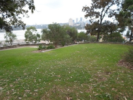 clyne reserve millers point
