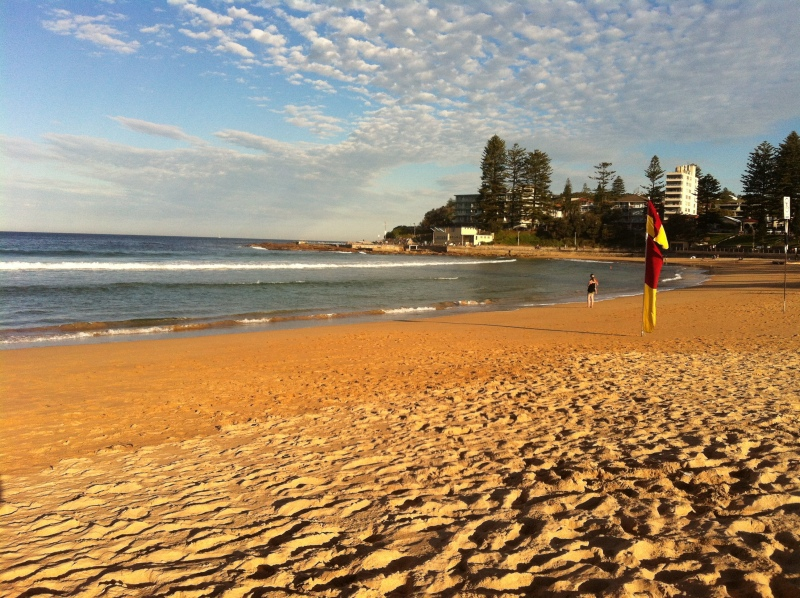 Cafes In Dee Why Beach