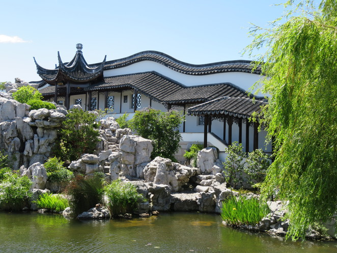 Dunedin, Chinese Garden, New Zealand, Garden, Lunch, Flowers, Otago, Chinese,