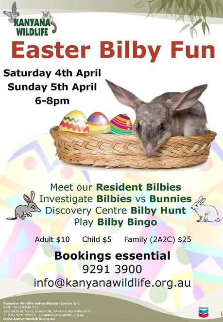Easter Bilby Event, Kanyana Wildlife Rehabilitation Centre