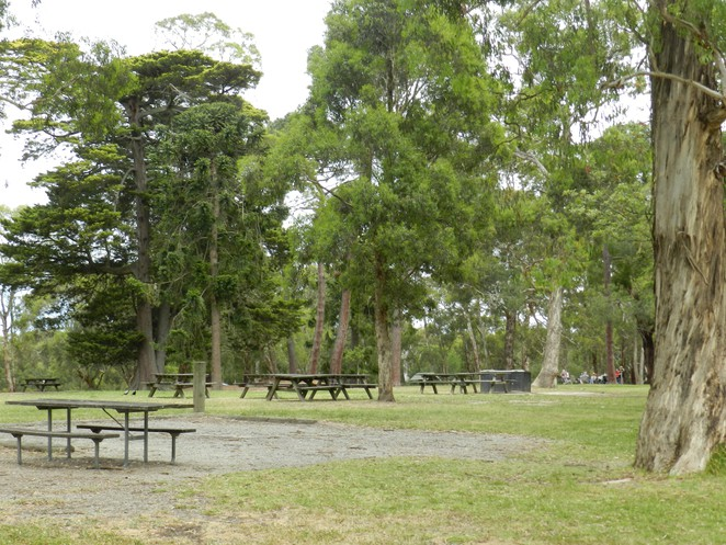jells park, picnic grounds in melbourne, picnics in wheelers hill, picnic grounds, picnic tables, Pines Picnic, ,
