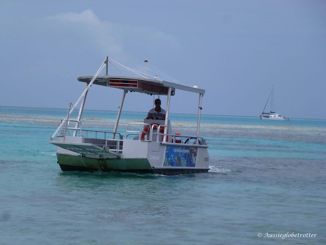 Lady Musgrave, Island, Main Event, Tour, Great Barrier Reef, Snorkel, Bundaberg, glass bottom boat