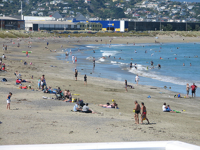Lyall Bay Wellington