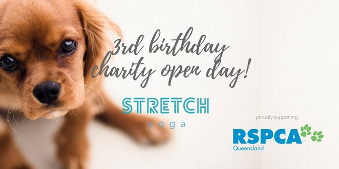 RSPCA Puppy Yoga Open Day 2017