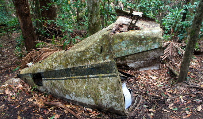 The remains of a plane crash in Mt Glorious near Brisbane is a bit of secret history you can hike to