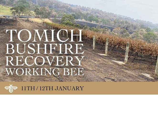 tomich wines working bee