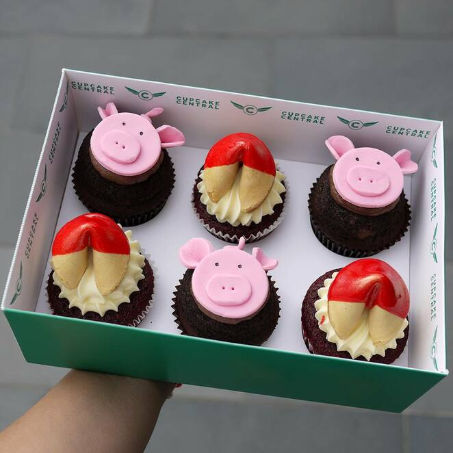 Year of the Pig Cupcake Central