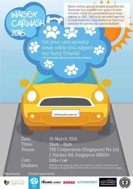 Car wash, Adopt pets, Dogs shelters, Singapore stray dogs, Charity, volunteers, pet shelters, SOSD, Hope for Animals