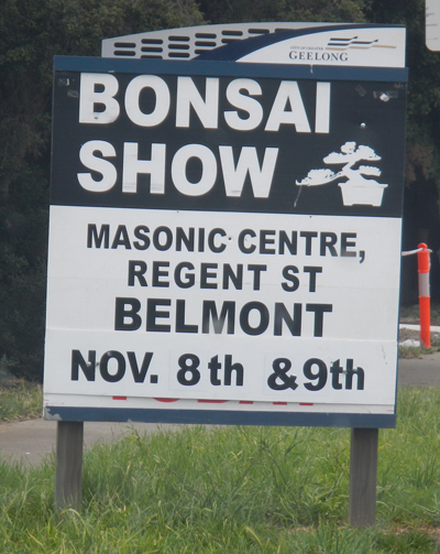 Geelong Bonsai Show 2014