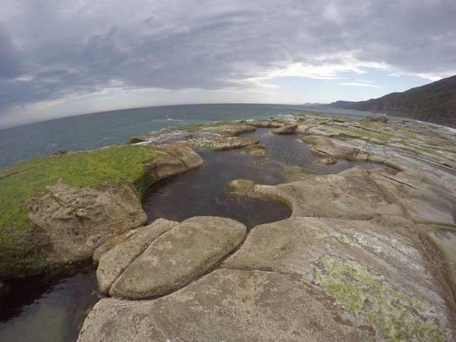 Figure 8 rockpools royal national park sydney