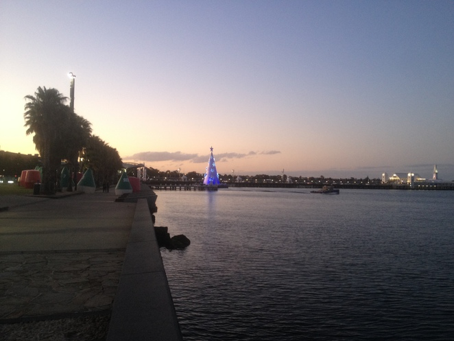 Waterfront path, palm trees, Corio Bay