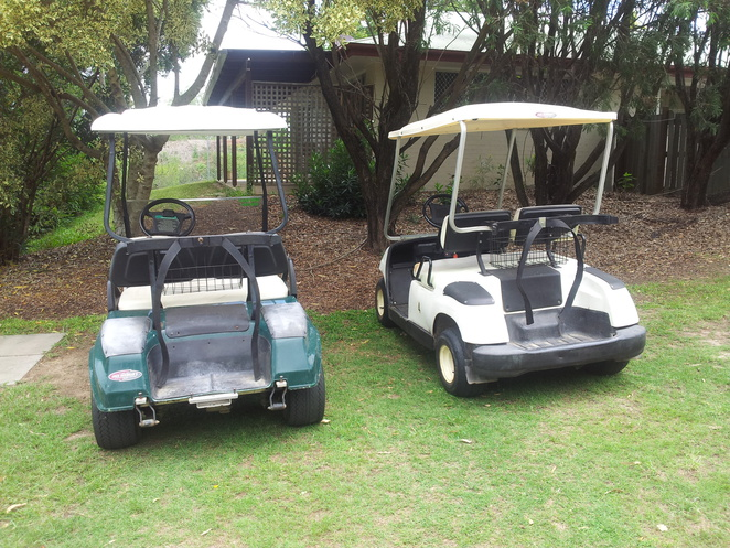 golf carts,golf,albany links,golf course