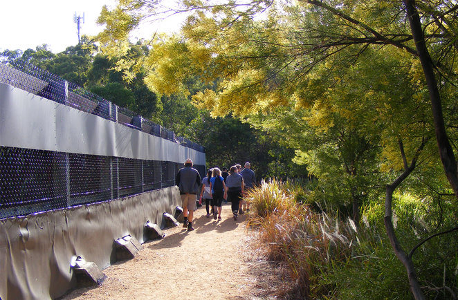 Walking over the green bridge between Raven Street Reserve and Milne Hill Reserve