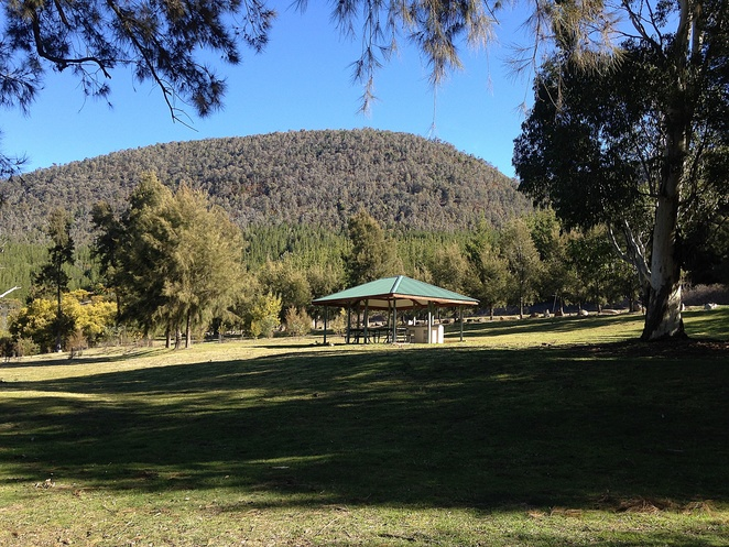 murrays corner, canberra, ACT, dog friendly areas, murrumbidgee river, river swimming, ACT,