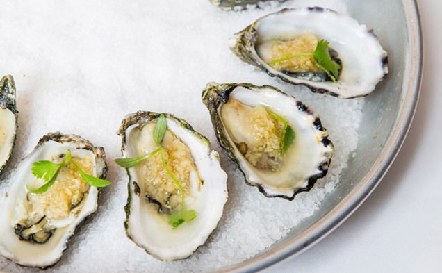 oysters, cheap oysters, sydneys cheapest oysters, 1 dollar oysters