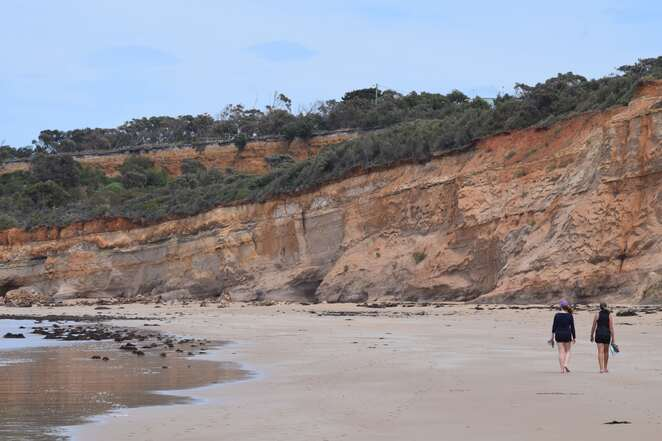 point addis, hiking, melbourne, great ocean road, torquay, surf coast walk
