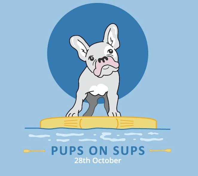 pups on sups, Gold Coast, Currumbin creek, competition, dog friendly, beach, dog event, Brisbane, fundraiser, animal welfare league Queensland, surfing Queensland, acas bowls, vet lounge, prizes, voucher, free gifts, supdogoz, courtney Hancock, water sports