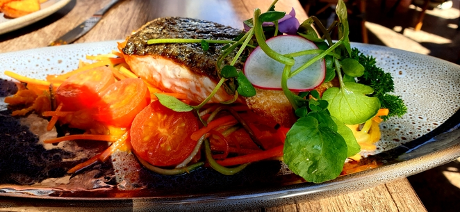 Salmon, lunch, Sydney, cafe, restaurant, family, casual