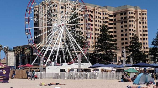whats on, adelaide, january, 2020, moseley beach club, summer, events