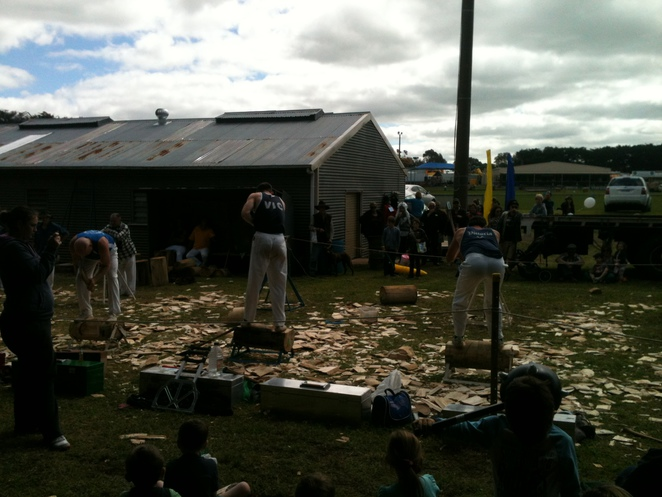 woodchopping competition 2013