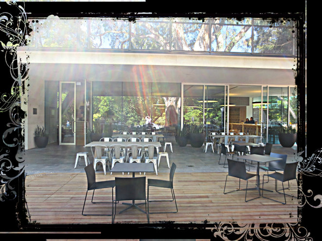 cafe, cemetary, cafe vita et flores, springvale botanical cemetery, event venue, weddings, burials, botanical gardens