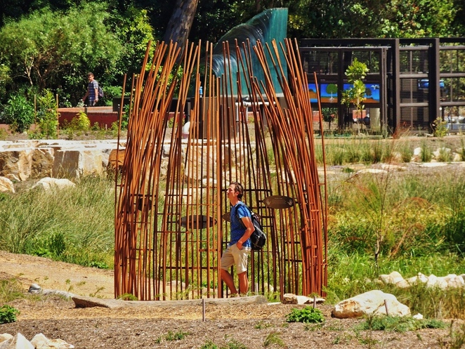 first creek wetland, work of art, adelaide botanic gardens, adelaide botanic gardens history, bicentennial conservatory, wetland habitat, water conservation, in adelaide, form and function, cultural presentation