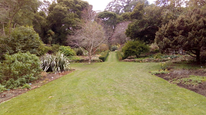 garden of st erth, blackwood, country garden, diggers club
