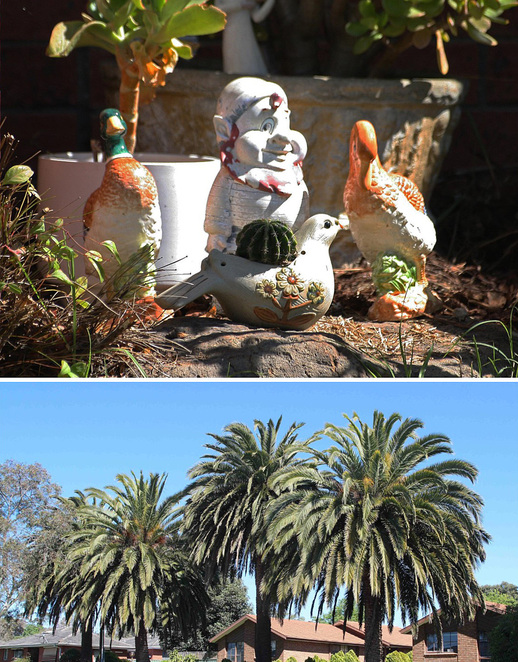 Garden ornaments & palm trees.