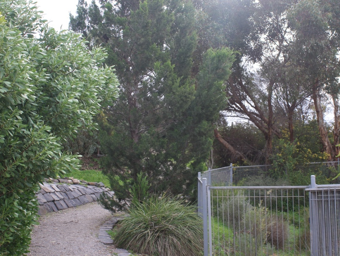 Landscaping at Aldinga Eco Village