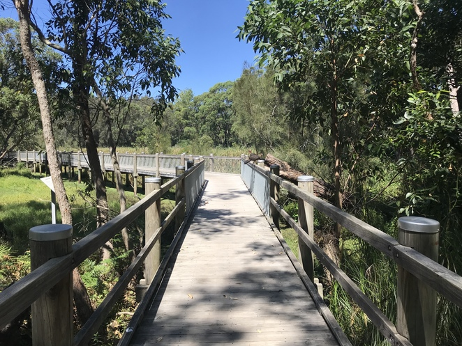 Warriewood Wetland Boardwalk