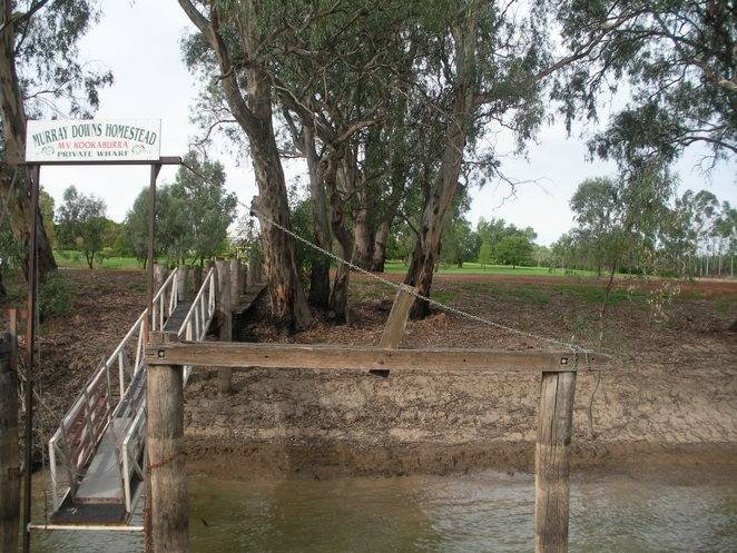murray downs,murray river,jetty