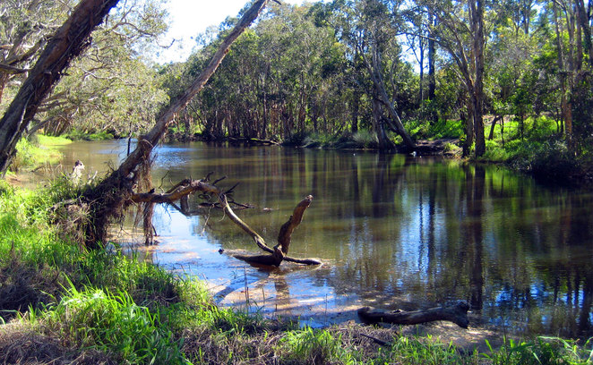 Hays Inlet in the North Lakes Environmental Park