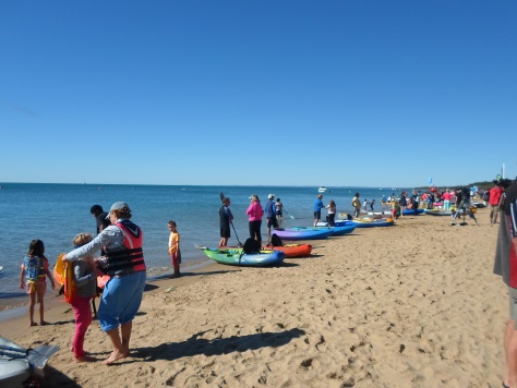 paddle out for whales, paddle out for whales hervey bay, hervey bay whale festival