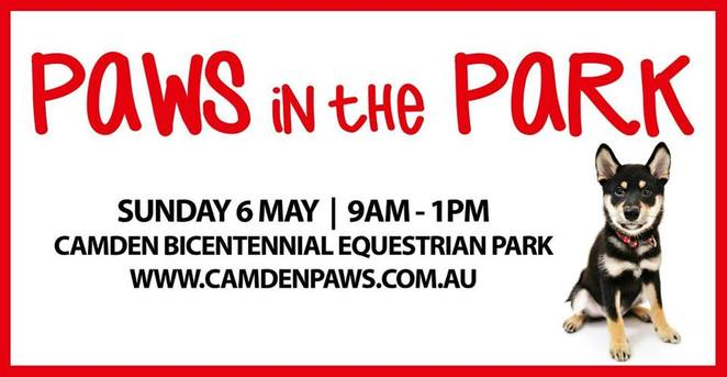 paws in the park, camden, new south wales, sydney, dog friendly, dog event, free, competition, Photo Booth, entertainment, walk, lookout, picture perfect pet photo, penstock