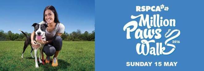 RSPCA Qld million paws walk 2016