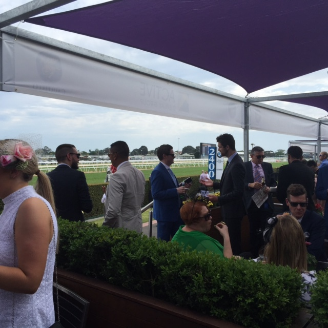 Spring Racing Carnival, Betting, TAB tips, Tips for racing, Fashion Advise for the races, Spring Fashion, Betting and Odds, Melbourne Cup, Be a Winner at the racetrack, horse racing,