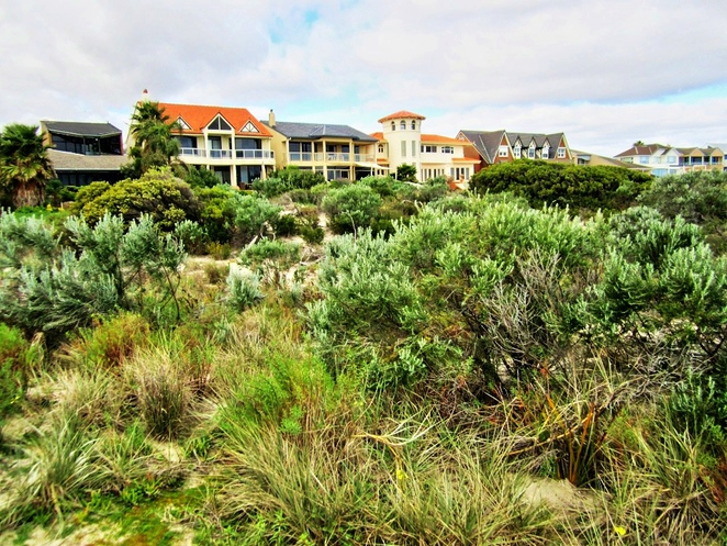 tennyson, tennyson dunes, tennyson dunes group, estcourt house, coastal path, west lakes, dune system, warrawee, grange, new housing